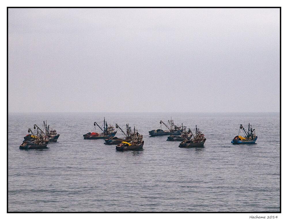 Flottille de pêcheurs