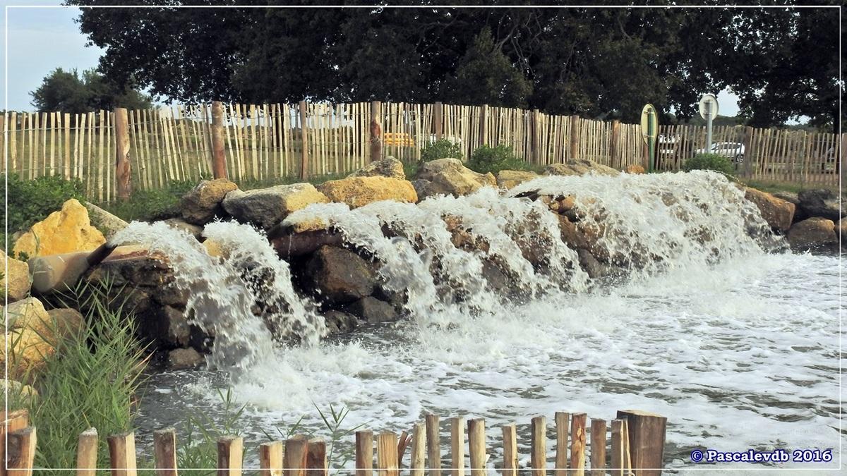 Plaines du Teich et domaine de Fleury - Octobre 2016 - 13/13