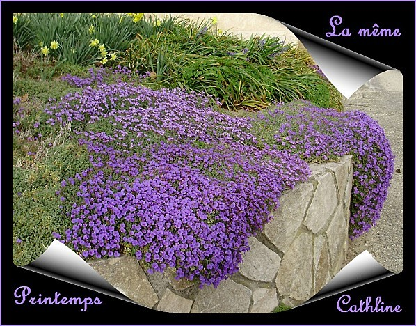 jardiniere-de-printemps.jpg