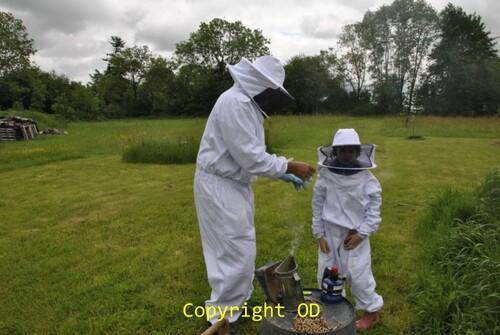 """Notre première ruche à """"la tasselière"""" au Plantis"""