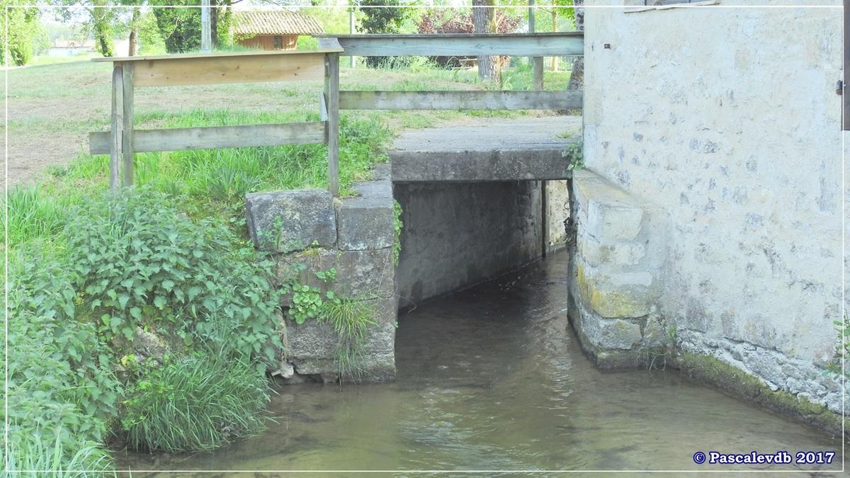 Printemps le long du canal latéral à la Garonne - Avril 2017 - 10/10