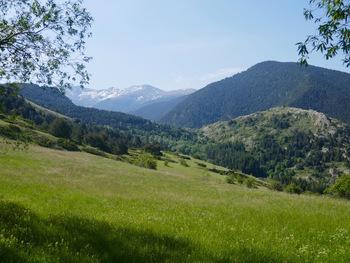 Vers le Sud-Est, la vallée du Sègre et la chaîne du Puigmal