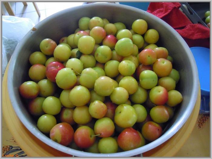 Confitures de prunes.......