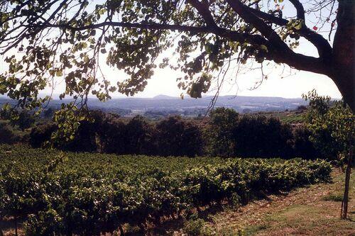 Lambesc, capitale de la Provence...