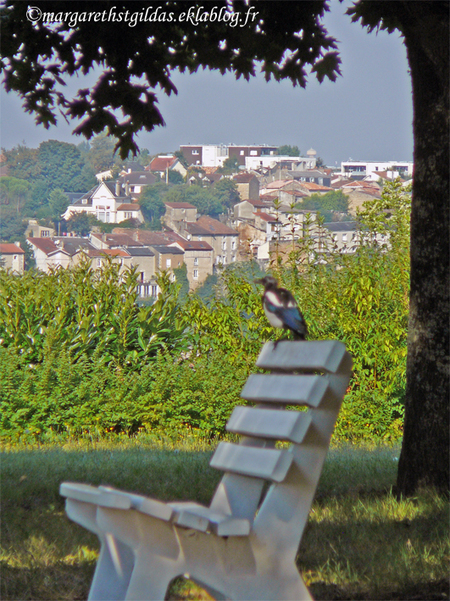 En passant par Poitiers - Going by Poitiers