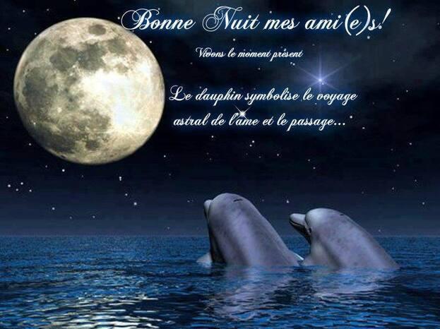 Bonne Nuit mes ami(e)s!