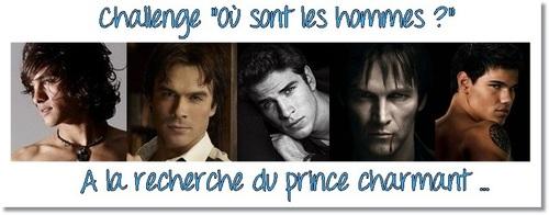 """Challenge """"Où sont les hommes ? """" A la recherche du prince charmant... (jusqu'au 14 juillet 2013)"""