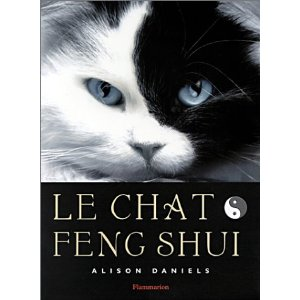 Le chat Feng shui :