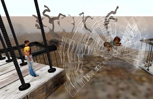 Papillons dans toiles d'araignées !