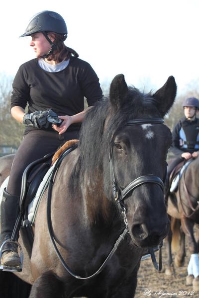 Photos du 14/01/2012