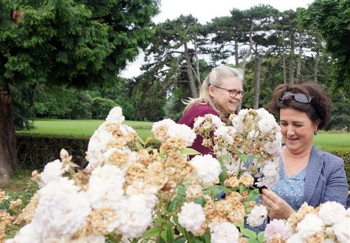 Un bel après-midi à L'hay les Roses