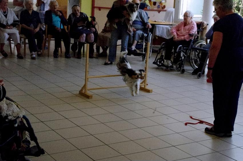 Animation à la maison de retraite de St Georges d'Oléron le mardi 25 juin 2013