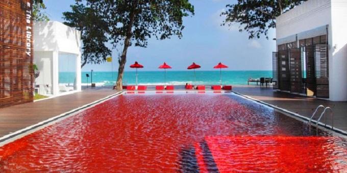 blogues les plus belles piscines du monde quelle merveille ma plan te pps diaporama. Black Bedroom Furniture Sets. Home Design Ideas