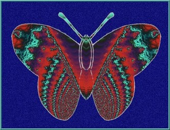 Butterfly N 18   Création de Joel Georges