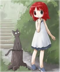 Tsuki et des chats