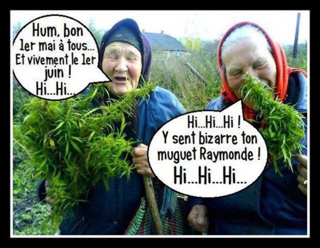 humour mamies babouska herbes