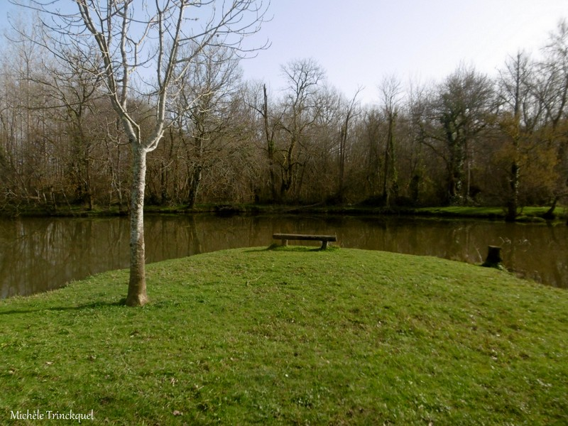 Une balade aux Etangs des Gravières à DAX (40), le 3 février (suite)...