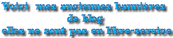 Mes Anciennes Bannières de Blog 4