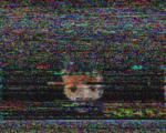 SSTV rx HAM Frequency