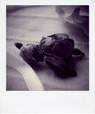 Cupcakes St-Valentin au chocolat amande et au coeur fraise