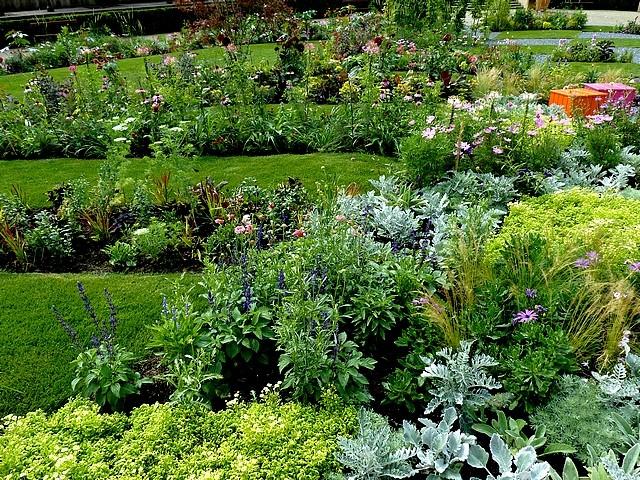 Metz un jardin en chantier 17 Marc de Metz 31 07 2012