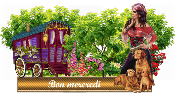 Défi pour mon amie Lara (Parfum Lavande )
