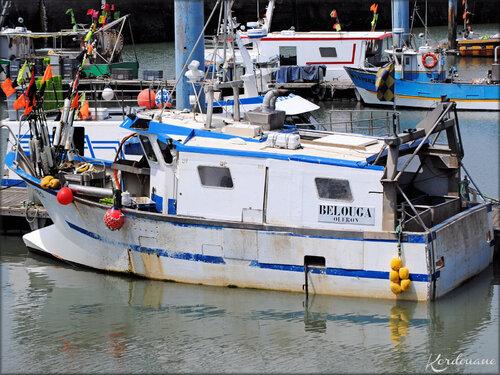 Photo bâteaux de pêche (la Cotinière - île d'Oléron)