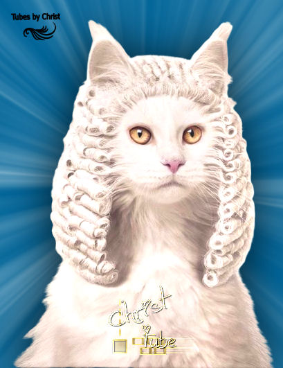 LORD CAT .