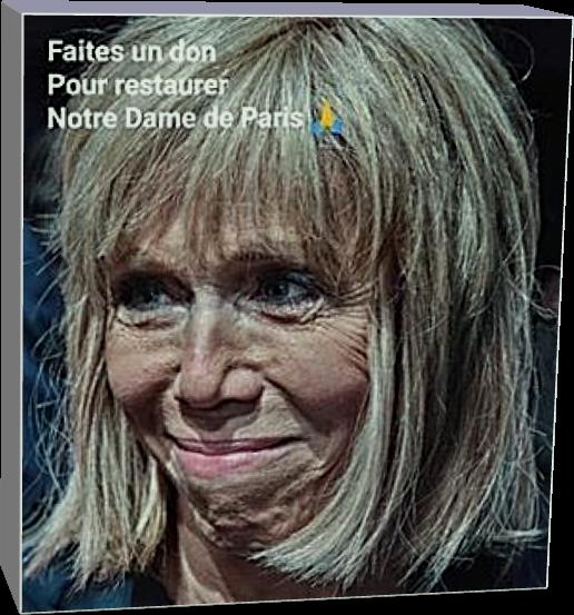 Faites un don pour restaurer notre dame de Paris (Humour)
