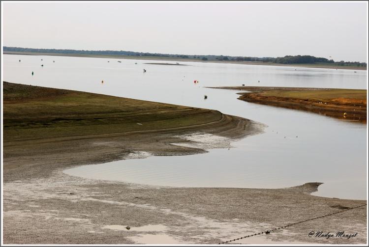 Le lac du Der