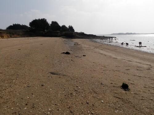 L'île de Boëde