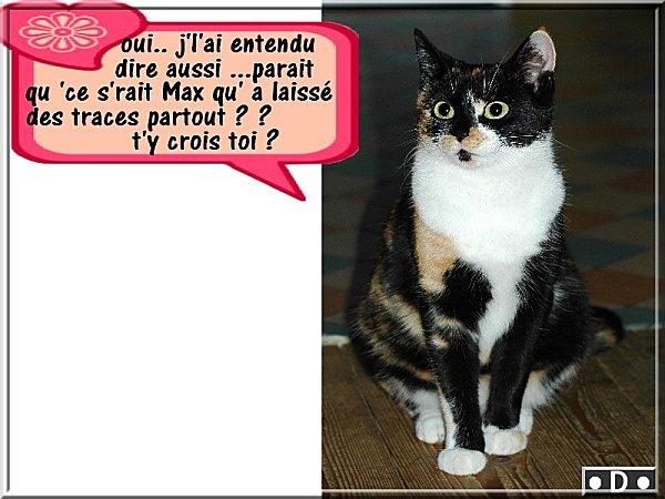 parait-qu-c-Max.jpg