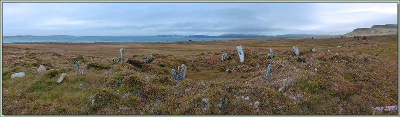 Le site archéologique de Qariaragiuk - Somerset Island - Nunavut - Canada