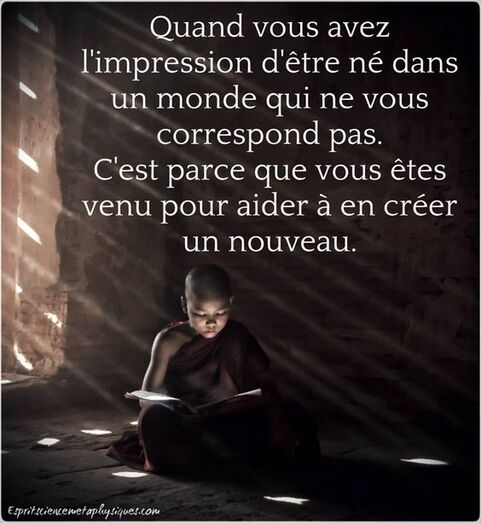Quand vous avez l'impression d'être né dans un monde qui ne vous correspond pas, c'est parce que vous êtes venu pour aider à en créer un nouveau. #citation #citationdujour #proverbe #quote #frenchquote #pensées #phrases