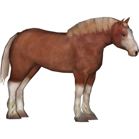 File:Clydesdale (Tamara Henson)4.png