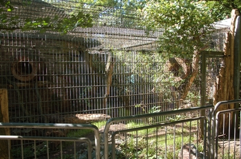 Zoo Duisburg 2012 619