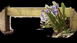 Virágok2 .png tubek