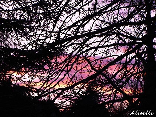 Soleil-couchant-01-02-2010-17h48.jpg