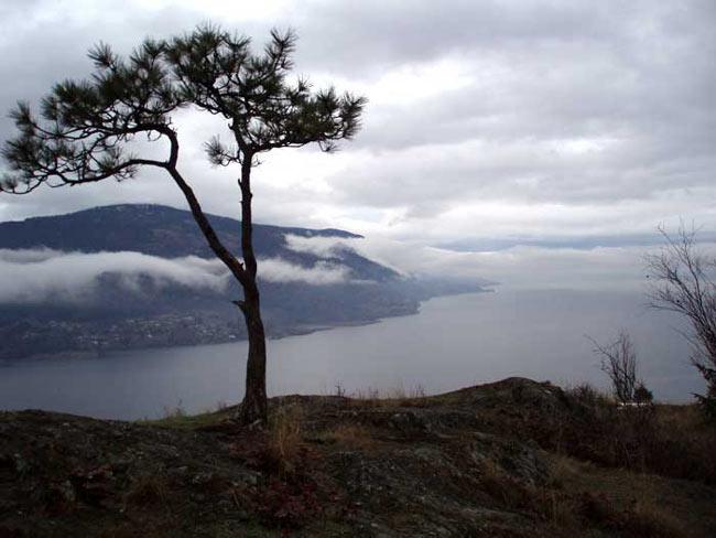 Cryptozoologie:  Le monstre du lac Okanagan