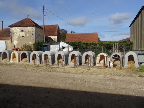 l'E.A.R.L. laitière Bertrand Jean, à Poiseul la Ville