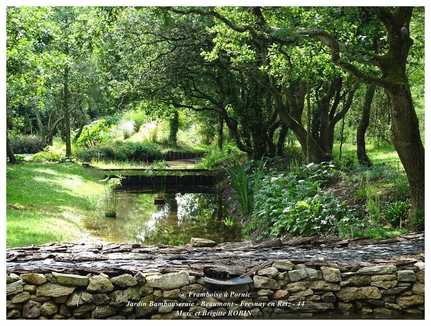 Rendez-vous au Jardin Bambouseraie de Beaumont -44-