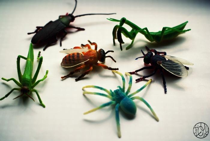 Un p'tit jeu sur les insectes (inspiration Montessori)