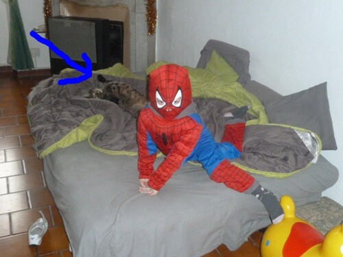 Spiderman attaque !