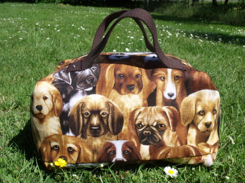 Valisette chien