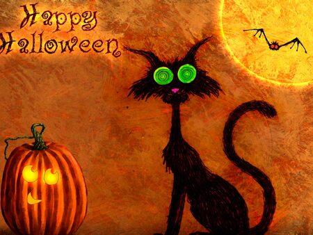 """Steack haché """"Araignée d'Halloween"""""""