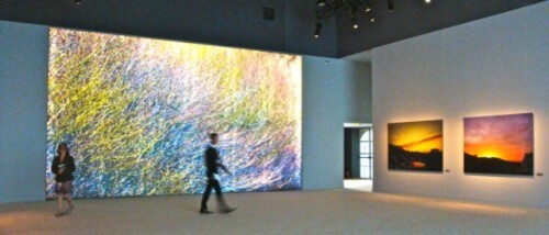 Ahae expo fenêtre Tuileries