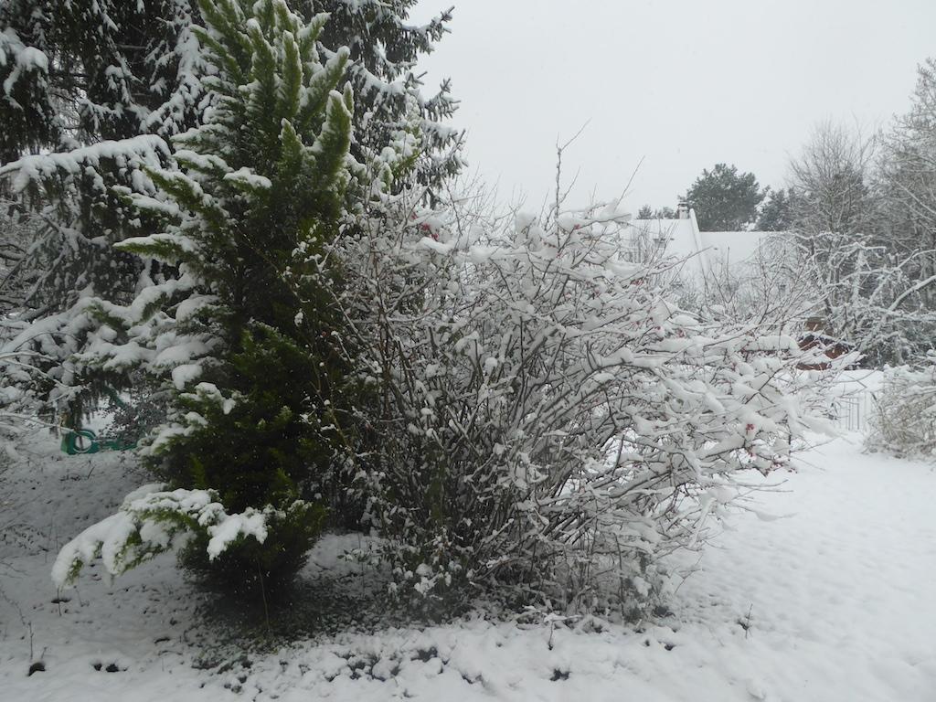 Saint Cyr sous la neige enfin!!