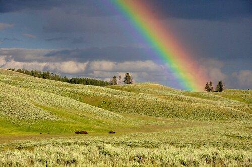 L'arc en ciel, un trésor de la nature