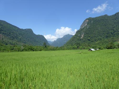 Un peu de nouvelles depuis le Vietnam et maintenant Laos