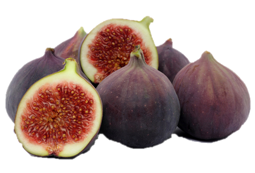 Vertus médicinales des légumes et des fruits : FIGUIER